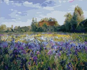 Field of Irises by Clayde Monet