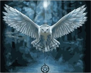White Owl and Dreamcatcher