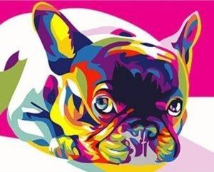 Colorful Frenchie Dog