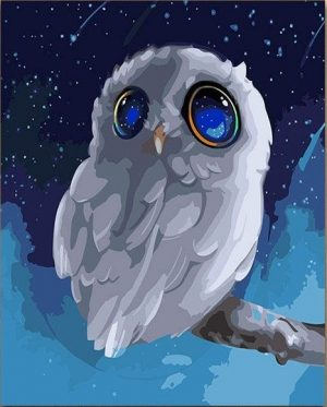 Doe Eyed White Owl