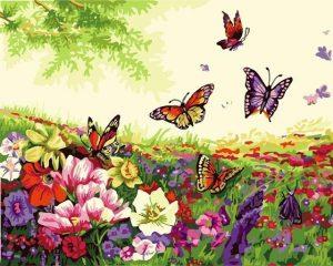 Butterflies amongst a field of flowers