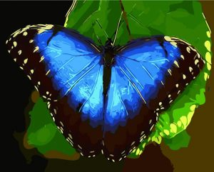 Blue butterfly resting on leaf