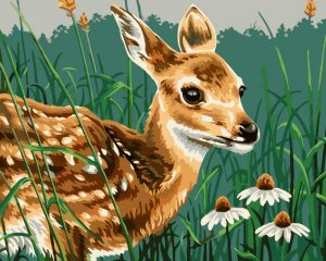 Baby deer with daisies