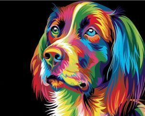 Colorful cocker spaniel dog