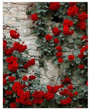 Climbing Wall Roses