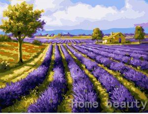 Endless Lavender